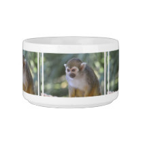 Amazing Squirrel Monkey Bowl