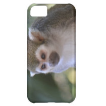 Amazing Squirrel Monkey Case For iPhone 5C