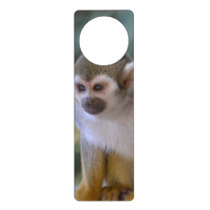 Amazing Squirrel Monkey Door Hanger