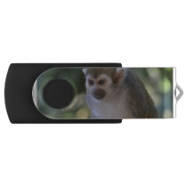 Amazing Squirrel Monkey Flash Drive