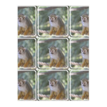 Amazing Squirrel Monkey Fleece Blanket
