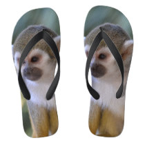 Amazing Squirrel Monkey Flip Flops