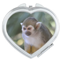 Amazing Squirrel Monkey Makeup Mirror