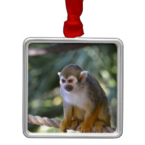 Amazing Squirrel Monkey Metal Ornament