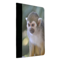 Amazing Squirrel Monkey Padfolio