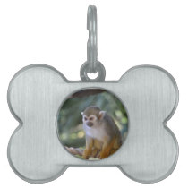 Amazing Squirrel Monkey Pet ID Tag