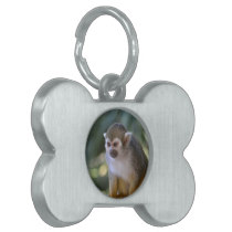 Amazing Squirrel Monkey Pet Name Tag