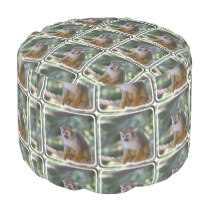 Amazing Squirrel Monkey Pouf