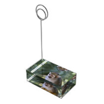 Amazing Squirrel Monkey Table Card Holder