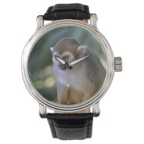 Amazing Squirrel Monkey Watch