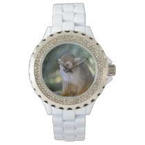 Amazing Squirrel Monkey Wristwatches