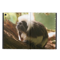 Cotton Topped Tamarin Monkey iPad Air Case