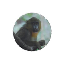 Cute Mandrill Jelly Belly Tin