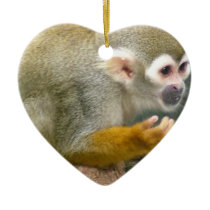 Cute Squirrel Monkey Ornaments