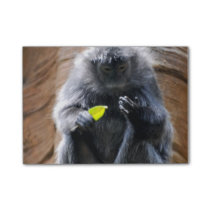 Ebony Langur Post-it Notes