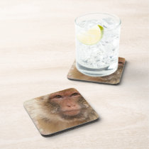 Macaque  Cork Coasters