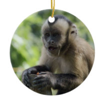 Playful Monkey Ornament
