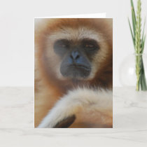 Sad Gibbon Greeting Card