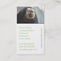 Saki Monkey Business Card