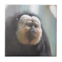 Saki Monkey Ceramic Tile