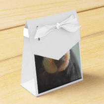 Saki Monkey Favor Box