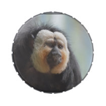 Saki Monkey Jelly Belly Tin