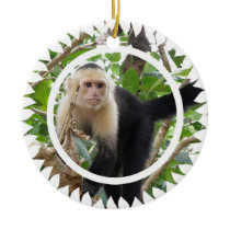 White Faced Capuchin Monkey Ornament